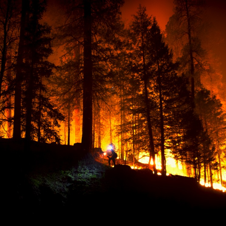 APS Focusing on Wildfire Planning to Keep Communities Safe