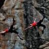 Flagstaff Aerial Arts