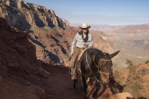 Marlboro Man in Action at the Grand Canyon