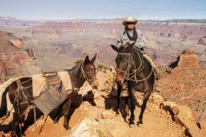 Marlboro Man in Action at the Grand Canyon